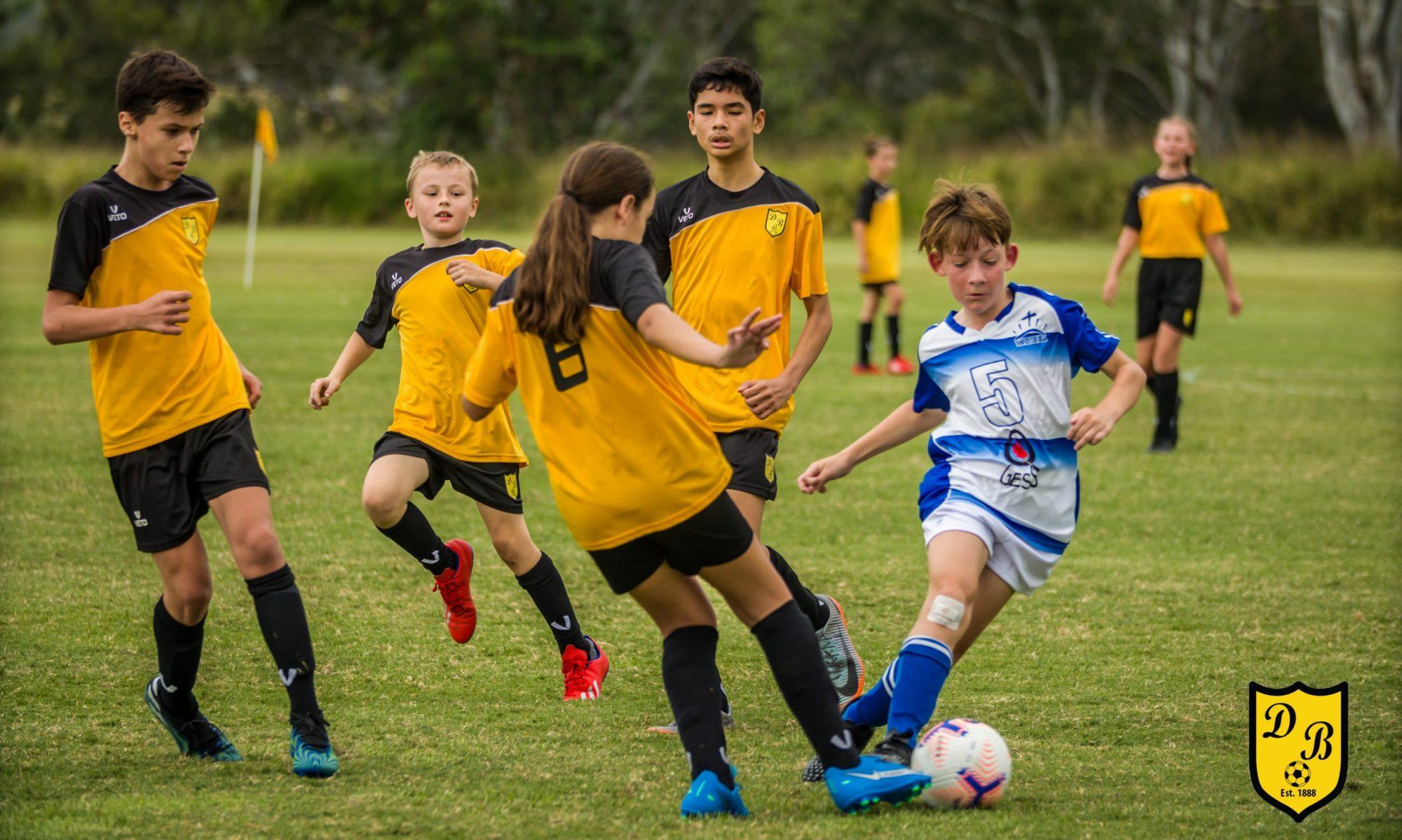 Dinmore Bushrats Soccer and Sports Club Inc